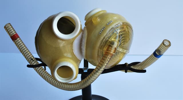 History Trivia Question: How long did William J. Schroeder live for after receiving his artificial heart?