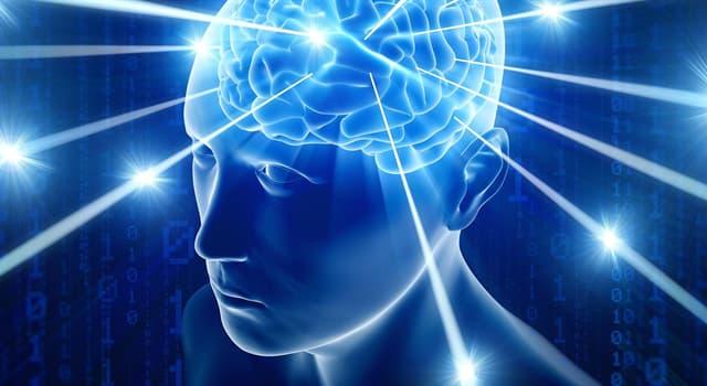 Наука Запитання-цікавинка: Як називається уявний експеримент, який вперше був опублікований Джоном Сёрлом в 1980 році?