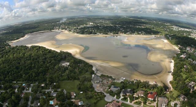 Історія Запитання-цікавинка: Скільки людей загинуло в результаті катастрофи на озері Пенер в штаті Луїзіана (США) в 1980 році?