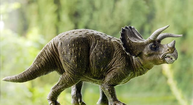 Nature Trivia Question: Which dinosaur is this?