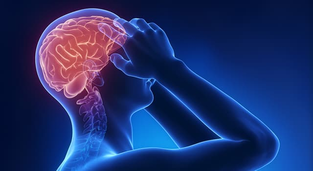Science Trivia Question: Which of these is an inflammation covering the brain and spinal cord?