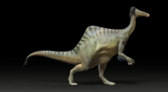 Наука Запитання-цікавинка: На території якої країни були знайдені скам'янілі залишки дейнохейрус?