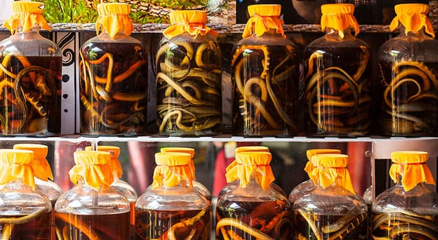 Culture Trivia Question: On which continent did snake wine originate?