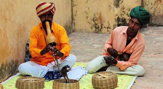 Culture Trivia Question: Where did the art of snake charming originate?