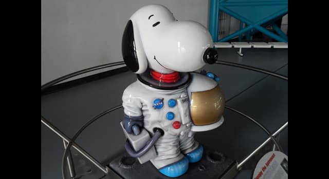Science Trivia Question: Which Apollo mission had the lunar module named 'Snoopy' and the command module 'Charlie Brown'?
