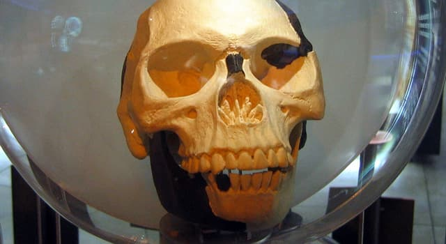 History Trivia Question: Which archaeologist discovered the first fragments of the Piltdown Man?