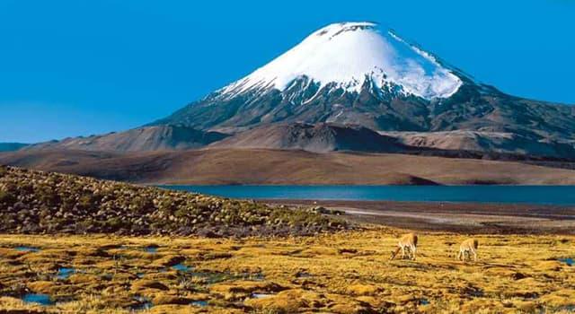 Natur Wissensfrage: Welcher Vulkan ist der höchste auf der Erde?