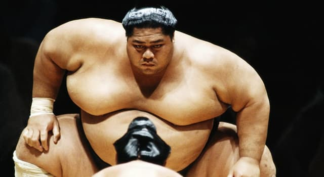 Sport Trivia Question: Which sumo wrestler became the heaviest non-Japanese-born wrestler in history?