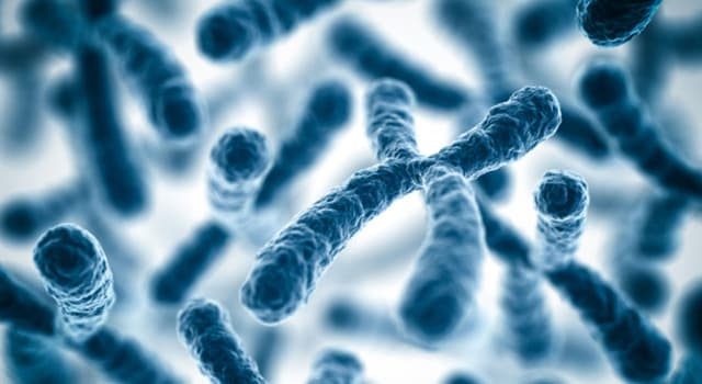 Science Trivia Question: Which syndrome is caused by a third copy of all or part of chromosome 18?