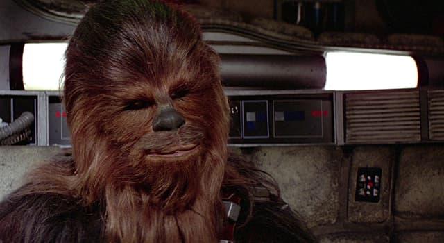 Фільми та серіали Запитання-цікавинка: Який персонаж «Зоряних воєн» зображений на фото?