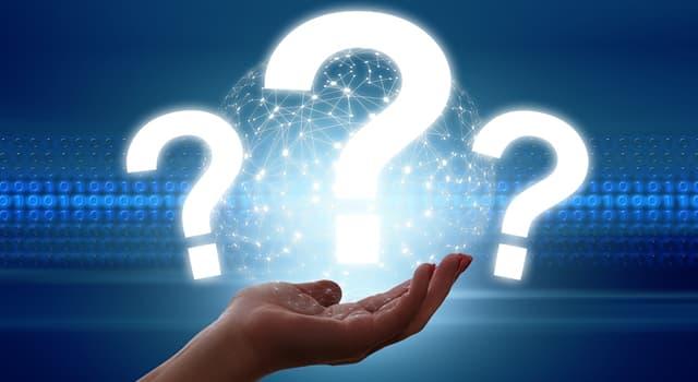 Суспільство Запитання-цікавинка: Що таке бістро?