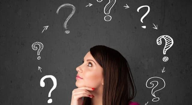 Культура Запитання-цікавинка: Що таке реверанс?