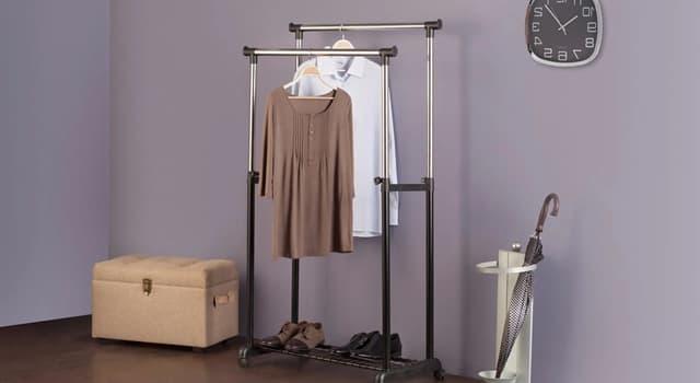 Суспільство Запитання-цікавинка: Як ще називають вішалку для одягу?