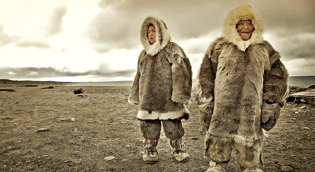 Культура Запитання-цікавинка: Як ескімоси вітають один одного?