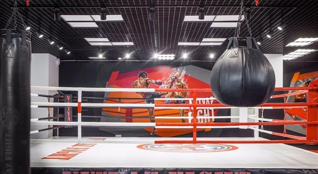 Спорт Запитання-цікавинка: Як називається спеціально підготовлена площадка для проведення поєдинків в боксі?