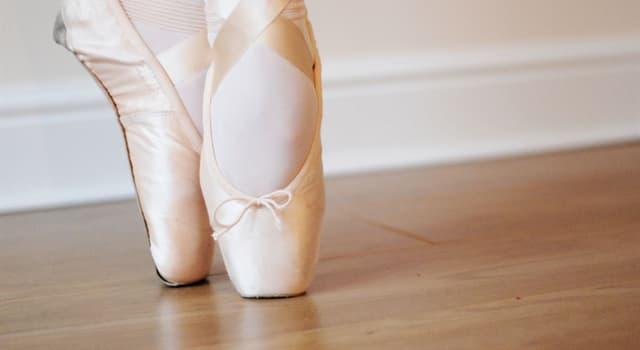 Культура Запитання-цікавинка: Як називаються жіночі балетні туфлі?