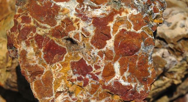 природа Запитання-цікавинка: Яка гірська порода зображена на фото?