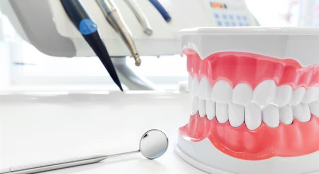 Наука Запитання-цікавинка: Який розділ медицини займається вивченням зубів, їх захворювань, методів їх профілактики та лікування?