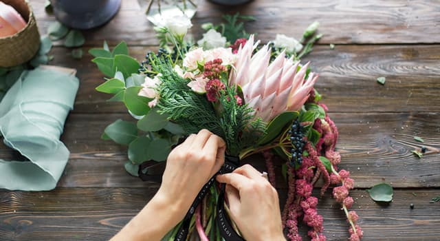 Культура Запитання-цікавинка: Хто складає квіткові композиції?