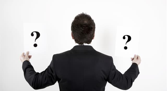 Суспільство Запитання-цікавинка: Хто такий мажордом?