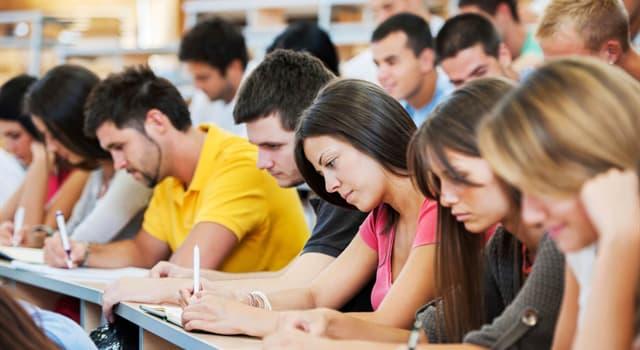 Суспільство Запитання-цікавинка: Хто є главою факультету в університеті?