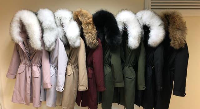 Культура Запитання-цікавинка: Від якої мови походить назва нині популярної теплою куртки - парки?