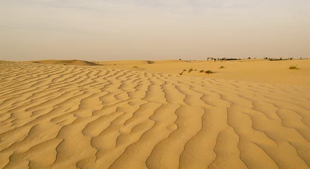 """Cultura Pregunta Trivia: ¿Cuál de las siguientes palabras significa """"morador del desierto""""?"""