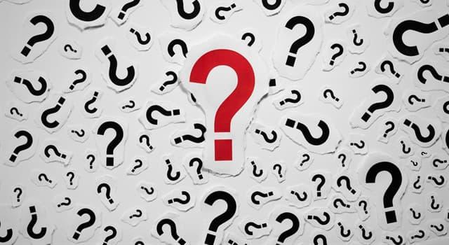 Sociedad Pregunta Trivia: ¿Qué es una kufiyya?