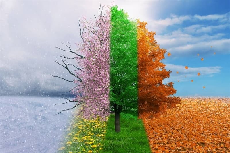 Nature Trivia Question: Based on the Gregorian calendar, how many seasons are generally recognized?
