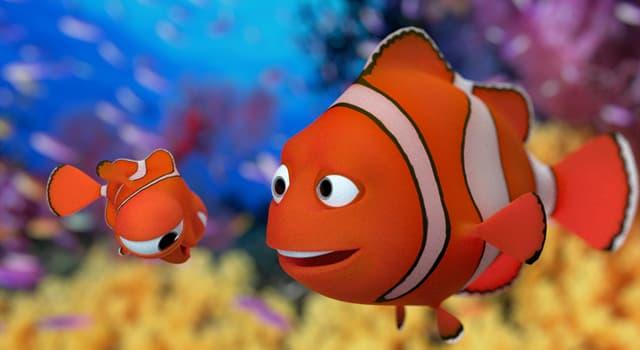 природа Запитання-цікавинка: Яка риба може змінювати свою стать на протилежний?