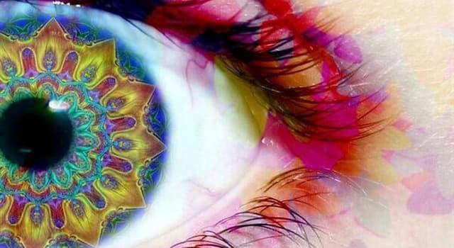 """Cultura Pregunta Trivia: ¿Qué banda tiene una canción que habla de """"una chica con ojos de caleidoscopio""""?"""