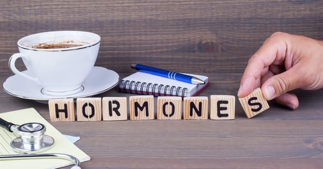 nauka Pytanie-Ciekawostka: Jaki hormon jest wytwarzany przez nadnercza?