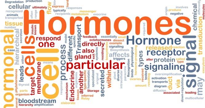 nauka Pytanie-Ciekawostka: Jaki organ w ludzkim ciele produkuje hormon gastrynę?