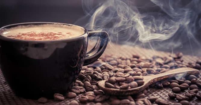 natura Pytanie-Ciekawostka: Korzeń której rośliny jest alternatywą dla kawy?
