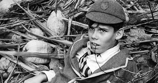 Filmy Pytanie-Ciekawostka: Który film opowiada o 30 chłopcach uwięzionych na wyspie?