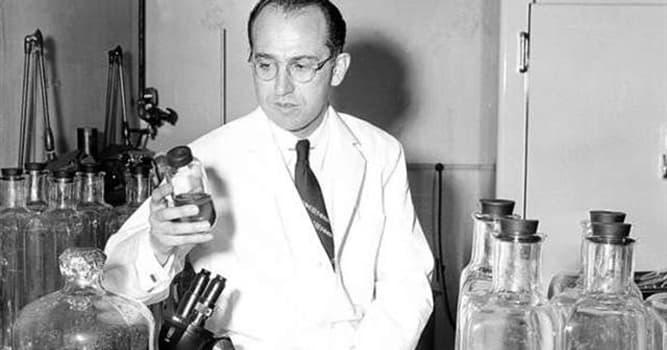 nauka Pytanie-Ciekawostka: Na jaki wirus Jonas Salk opracował szczepionkę w 1955 roku?