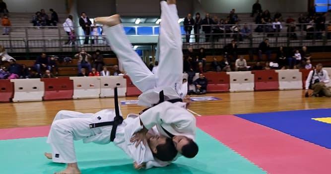 sport Pytanie-Ciekawostka: Z czego wywodzi się sztuka walki judo?
