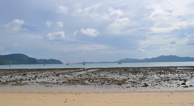 Naturaleza Pregunta Trivia: ¿Qué fenómeno natural es muchas veces precedido por un notable descenso del nivel del mar?