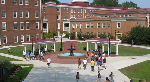 Sociedad Pregunta Trivia: ¿Qué es un campus?