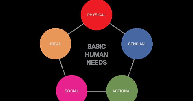 Science Trivia Question: Which of these psychologists created a hierarchy of needs?