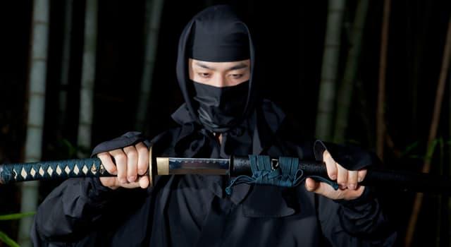 Historia Pregunta Trivia: ¿Cuál de las siguientes habilidades no era obligatoria para un ninja?