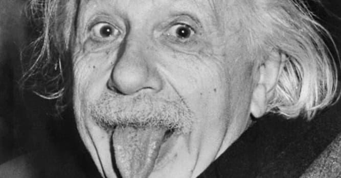 Geschichte Wissensfrage: In welchem Jahr wurde Albert Einstein ein US-Bürger?