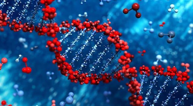 Сiencia Pregunta Trivia: ¿Qué rama de la ciencia estudia la herencia biológica?