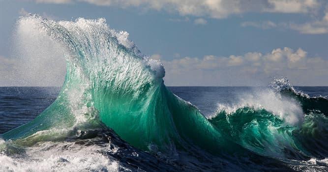 Naturaleza Pregunta Trivia: ¿Qué descripción barométrica corresponde a vientos de fuerza 11 en la escala de viento Beaufort?