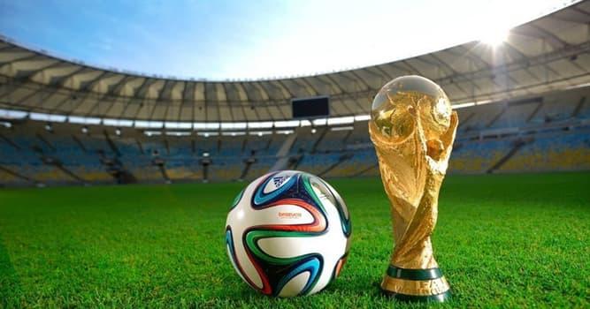 społeczeństwo Pytanie-Ciekawostka: Który kraj wygrał najwięcej Pucharów Świata w piłce nożnej mężczyzn stanem na 2014 rok?