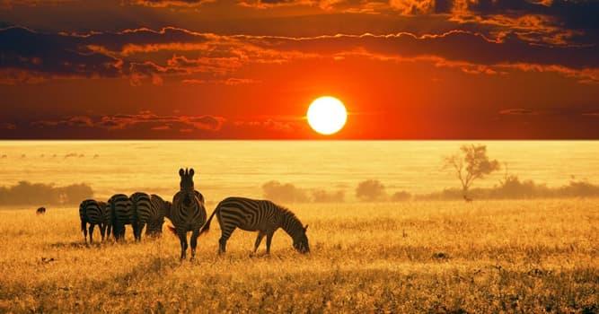 Geographie Wissensfrage: Welches von diesen Ländern liegt in Afrika?