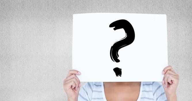 Kultur Wissensfrage: Zu welcher Gruppe der Musikinstrumente gehört das Kontrafagott?