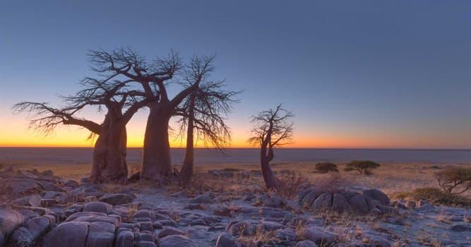 Geographie Wissensfrage: Auf welchem Kontinent liegt Botswana?