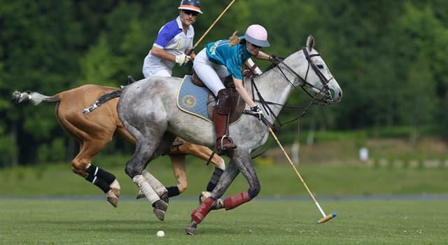 Deporte Pregunta Trivia: ¿Cuál de los siguientes es un deporte de equipo en el que los participantes juegan a caballo?