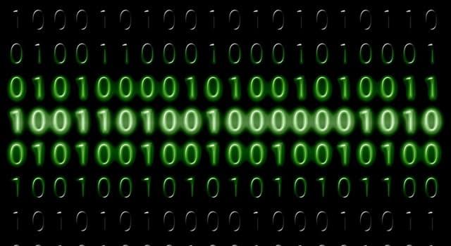 Сiencia Pregunta Trivia: ¿Cuánto es dos más dos según el sistema binario?